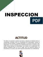 Inspeccion Semio Lunes
