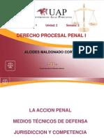 2 SEGUNDA SEMANA - La Accion Penal
