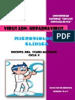 HEPADNAVIRUS