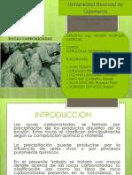 Cap. v Rocas Carbonatadas