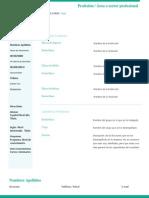 CV-alternativo-inverso.docx