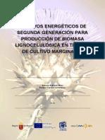 Biomasa_2013cultivos Energéticos de 2 Generacion Para Obtener Biomasa Lignocellosica