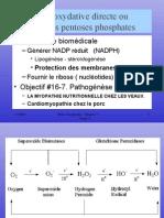 bioc32_98-1