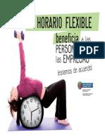 infohoraflex-cast1.pdf