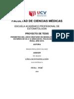 Proyecto Diandra