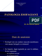 Esofag Cancer Curs 2