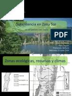 Subsistencia en Zona Sur - Prehistoria III