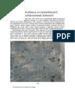 Tánczos Vilmos - A moldvabányai rovásírásfeliratról és keletkezésének hátteréről 2006.