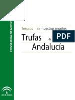Trufas de Andalucia