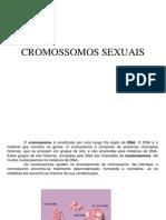 Apresentação Cromossomos Sexuais