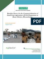 2012 ECA Baseline Survey Report Barue Districe Mz -25 10 12