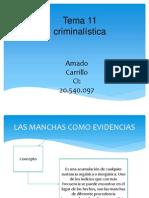 Criminalistica Amado Carrillo