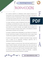 Microbiologia Informe Hongos Imprimir LISTO