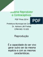 Sistema Reprodutor e Contraceptivos