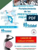 Factores de Riesgo Diagnostico y Manejo de Las Lesiones Pre Invasoras Del Cuello Uterino Hilda 2