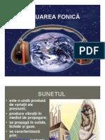 POLUAREA FONICA ppt