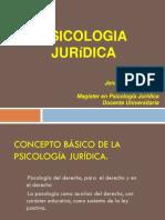 2 Conceptos Basicos Derecho Penal