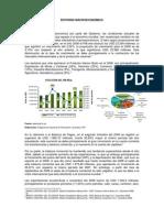 Entorno Macroeconomico Dic 2008