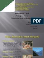 Diagnostico Local Tabay Municipio Santos Marquina