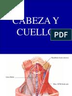 Clase Anatom