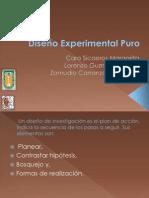 Experimental Puro