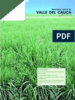 Valle Del Cauc A