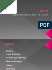 Knee Red Dot