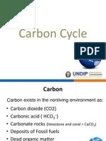 Carbon Cyle1
