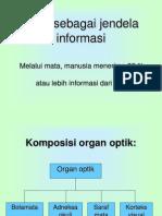 Anatomi & Fungsi Mata