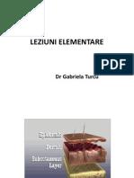 lez-elementare-2014