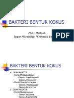BAKTERI KOKUS
