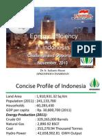 Energy Efficiency in Indonesia by Apkenindo
