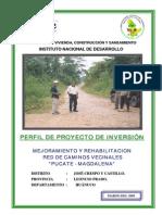 Perfil Proyecto Pucate - Magdalena