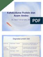 Katabolism Prot n a Amino 2013