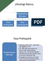 Patofisiologi Ikterus