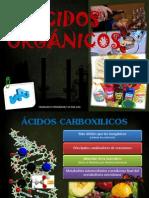 Ácidos Orgánicos.pptx