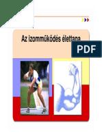 01 Izom Mukodes Sportm
