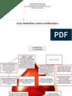 Las Manchas Como Evidencias Jose Camacho