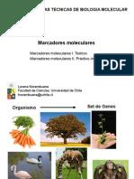 Marcadores Moleculares (Clase)