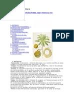 004 El Cultivo Del Coco