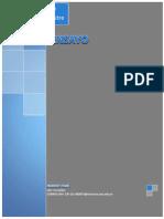 Derecho Administrativo Ensayo.pdf