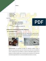 INFORME 1 -Procedimiento Experimental