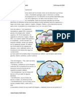 Que Son Los Ciclos Biogeoquímicos