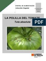 Hojas Informativas Polilla Tomate 2010