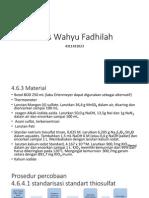 Anis Wahyu Fadhilah