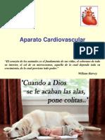 8a Clase Cardiovascular - Sangre
