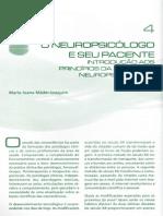 Aula 22 Abr_Mader-Joaquim, M.J - O Neuropsicólogo e Seu Paciente_introdução Aos Princípios Da Avaliação Neuropsicológica