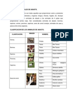 Clasificacion de Los Animales de Abasto.