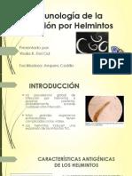 Inmunología de La Infección Por Helmintos