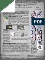 Desarrollo Embrionario de Peces Anuales